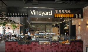 Vineyard in Utrecht